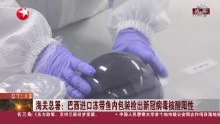 海关总署:巴西进口冻带鱼内包装检出新冠病毒核酸阳性