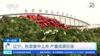 辽宁:秋菜集中上市 产量低菜价涨