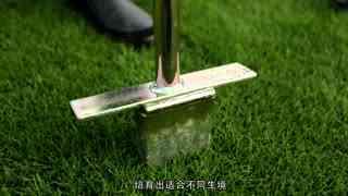 中国品牌档案_20200909_绿色护航美丽中国