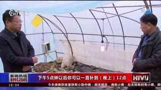 杭州新闻60分_20201125_杭州新闻60分(11月25日)