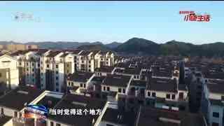 杭州新闻联播_20201130_秋韵杭州 芦雪纷飞 西溪湿地迎来芦花最佳观赏季