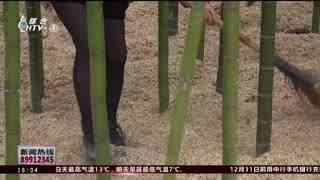 杭州新闻60分_20201130_杭州新闻60分(11月30日)