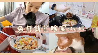 森巴兔_20200831_养猫快乐日常,附野生抓饭教程