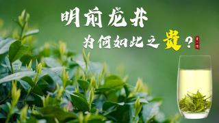 夏一味_20210427_【龙坞寻茶】明前龙井,为何贵如金?