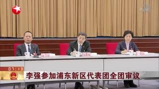 李强参加浦东新区代表团全团审议