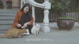 奇妙旅行第二季 第二十一集:盛谷藏冬味