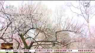 杭州新闻60分_20210213_杭州新闻60分(02月13日)