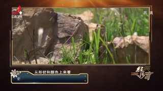 考古人员推测墓葬积石的作用