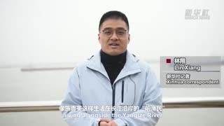 2021年04月06日中国时间