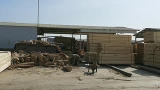 呈果木业木材加工厂,好原木出好木方!