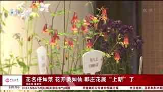 杭州新闻60分_20210410_杭州新闻60分(04月10日)