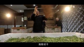 《崛起中国》—恩施玉露2min精剪