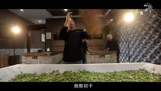 崛起中国_20210313_ 恩施玉露2分钟版