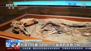 记者探访西藏首例整箱提取的吐蕃墓葬
