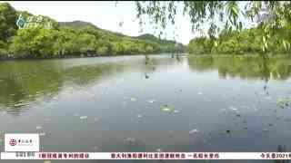 杭州新闻60分_20210507_杭州新闻60分(05月07日)