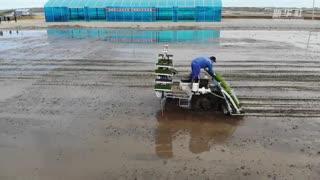 黑龙江:北斗导航助力无人驾驶插秧