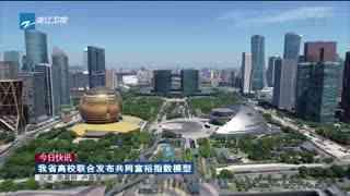 浙江省高校联合发布共同富裕指数模型