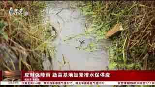 杭州新闻60分_20210615_杭州新闻60分(06月15日)