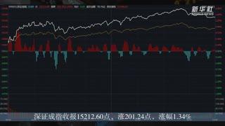 21日A股主要股指收涨