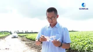 全球连线|看现代科技如何赋能智慧农业高质量发展