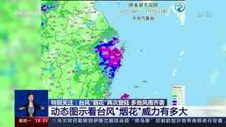 """动态图示看台风""""烟花""""威力有多大"""