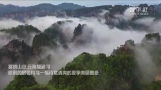 张家界武陵源:晨雾和光云起峰上