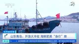"""青岛:开渔大丰收 海鲜肥美""""身价""""降"""
