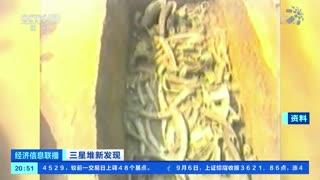 四川广汉:三星堆神树再上新 3号坑神树已出土