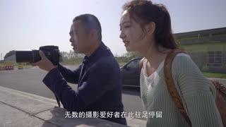 【最江南】25飞鸟的天堂:临江江海湿地