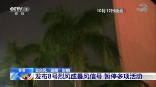 """香港 受台风""""圆规""""影响 发布8号烈风或暴风信号 暂停多项活动"""