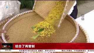杭州新闻60分_20211023_杭州新闻60分(10月23日)