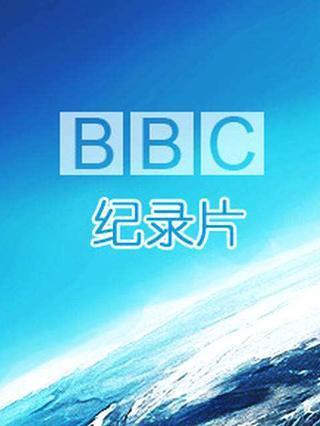 BBC专区