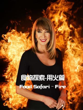 食物探索-用火篇