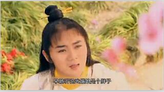 袁腾飞讲历史:中国现代经济 肥猪赛大象-最新、