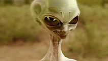 《平凡的世界》外星人乱入是什么鬼!孙少平相思成疾