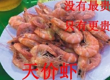 """天价虾负责人被停职 青岛""""天价大虾""""海鲜店被立案查处"""