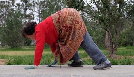 市民公园爬行锻炼医生称模仿动物的爬行达到健身目的