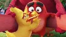 《愤怒的小鸟》大电影预告 大红强力出击