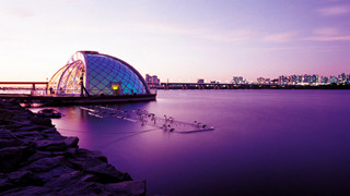 韩你玩:汉江公园炸鸡外卖 欣赏美腻的彩虹喷泉