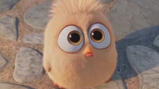 《愤怒的小鸟》中国预告片 (中文字幕):不一样的英雄