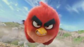 《愤怒的小鸟》中国预告片:内战版 (中文字幕)