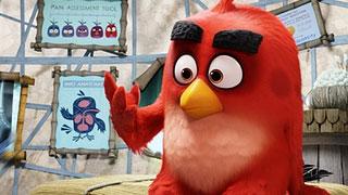 《愤怒的小鸟》预告片:胖红环游世界版 (中文字幕)