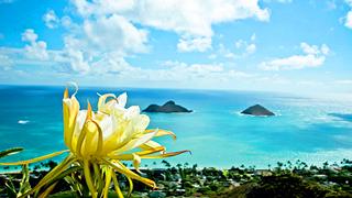 带你看世界:可爱岛