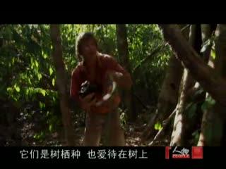 奥斯汀 史蒂文斯 搜索巨型矛头蝮蛇2