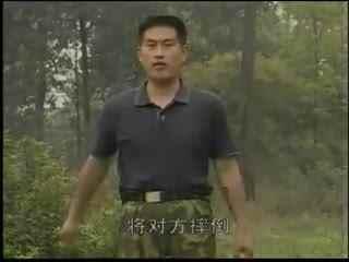 擒拿术教学视频图片 擒拿术教学视频格斗擒拿术教学视频