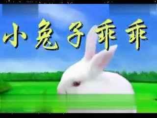儿歌 大全连续 小兔子乖乖 小白兔乖乖 儿歌 视频