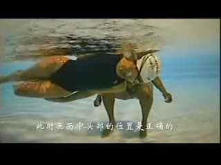 游泳教学视频 拉链手滑行 自由泳--华数TV