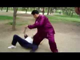 散手 擒拿 格斗 技巧 擒拿手 教学视频图片