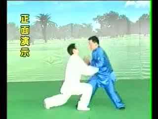 擒拿格斗教学视频图片