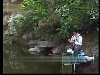 钓鱼鱼饵教学-饵料v鱼饵钓鱼视频鲫鱼技巧--华iPad教程多开图片
